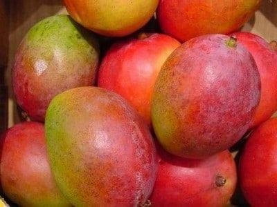 ירקות אורגניים ו מנגו טומי אורגני