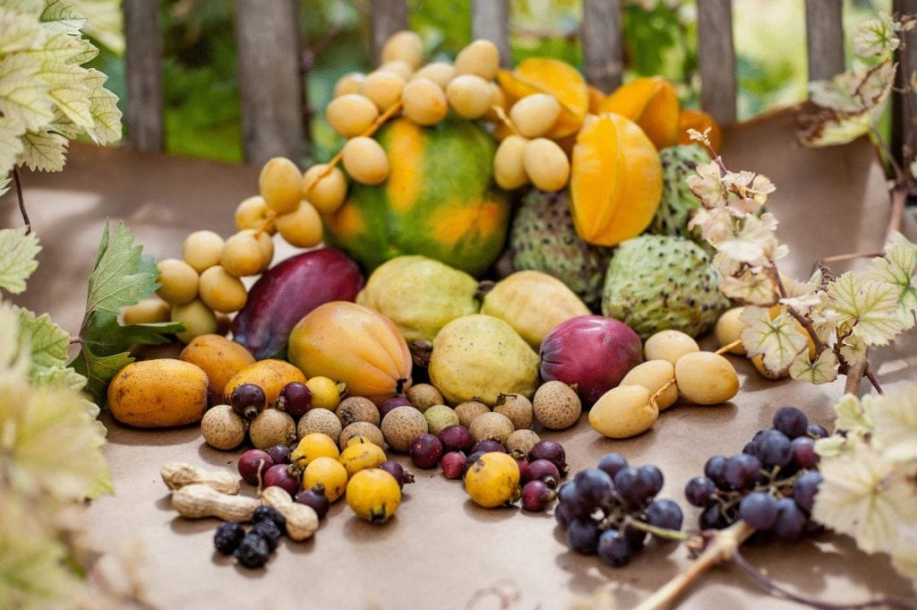 מגוון פירות אקזוטיים אורגניים