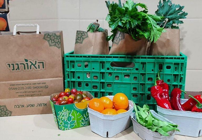 ארגזים עם ירקות אורגניים